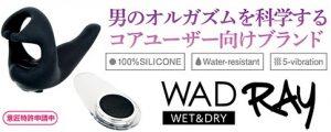 WAD Rayの宣伝画像