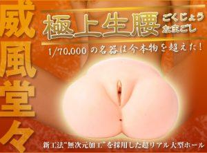 大型オナホール【極上生腰】