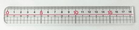 ペニスサイズ測定用の定規